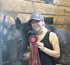 State horse show, Amber Dreschel