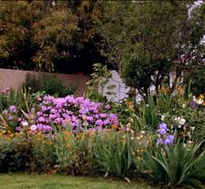 Andi's Garden 00