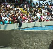 Miami Seaquarium 114