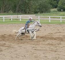 4-H Haley Shea horse