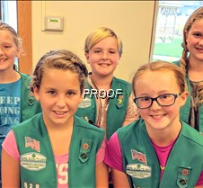 Bronze Award Troop 828 girls
