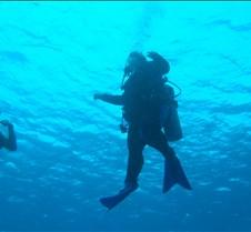 Melody Underwater