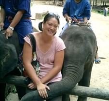 190 me and elephant