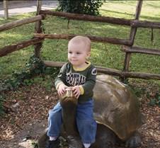 J Zoo 0611_075