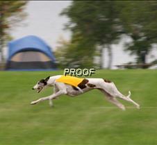 Run2_Veterans_2697 copy