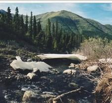 Yukon-Ice Bridge (928x603)