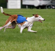 Run2_Specials _Course2_6534 copy