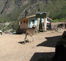 Peru 199