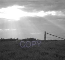 say copy.jpg