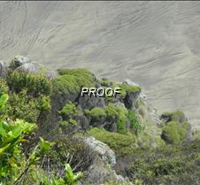 Coastal Scenic NZ