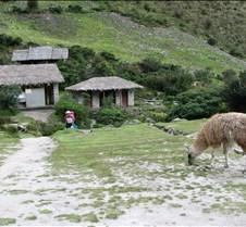 Peru 218