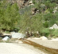 Tucson Sabino Canyon 9