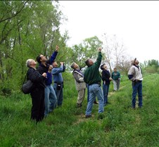 Bird watchers pointing135