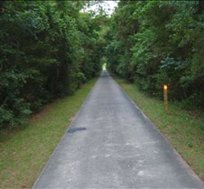 Old Road into Atlaya