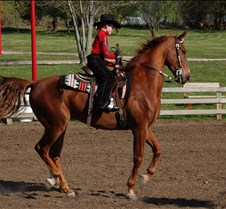 Lone Star-Optimist Horse Show
