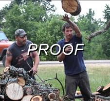070613_Wood Stacking Wildart01