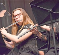 varsity band flute best