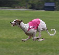 Run2_Course1_IMG_6328 copy