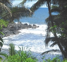 Hawaii 2010 286
