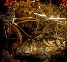 BikeInLeavesGold
