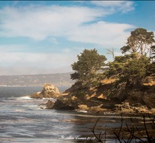 September 24, 2019 Point Lobos . Point Lobos . Monterry ,CA 