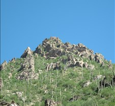 Tucson Sabino Canyon 28