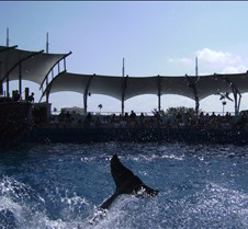 Miami Seaquarium 077