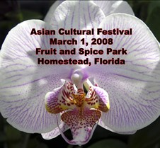 Asian Cultural Festival 2008