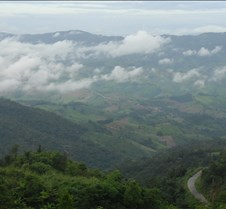 Phu Chi Fa Forest Park