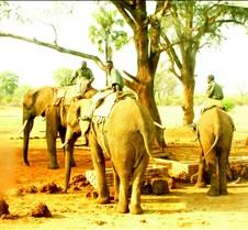 Zimbabwe Vic Falls0013