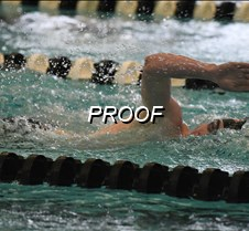 Lions/Warriors Swimming 12-13-19
