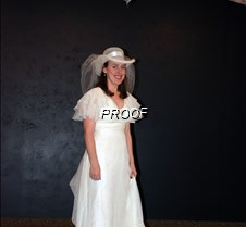 Cindy Wolin gown