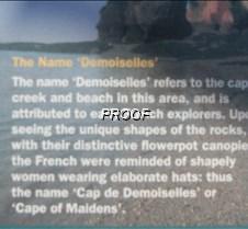 Narrative Demoiselles (North Beach)