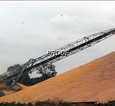 grain pile2