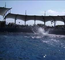 Miami Seaquarium 072