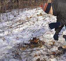 Buckthorn-applying herbicide