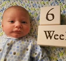 Jack 6 weeks
