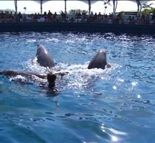 Miami Seaquarium 092