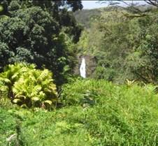 Hawaii 2010 275
