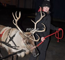Reindeer rides2