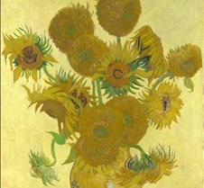 082Vase with Fourteen Sunflowers-Vincent