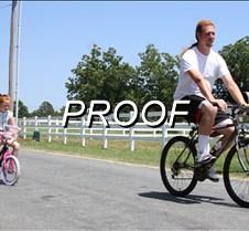 062913_Wildart Bikes03