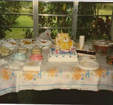 Maja Baby Shower/Pregnant with Eddy 1986
