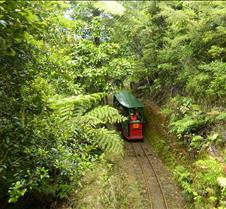 Driving Creek Railway Coromandel