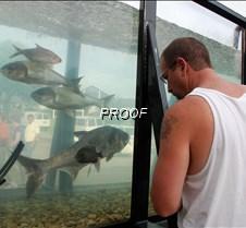 John K and ugly fish