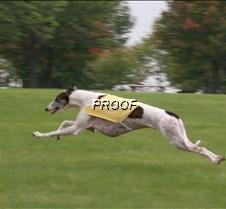 Run2_Course1_IMG_6335 copy