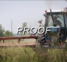 070613_Farmer Wildart01