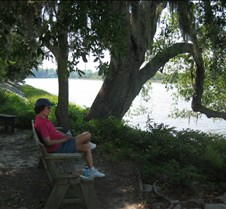 Sitting on the Ashley River