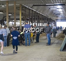 touring the dairy operation
