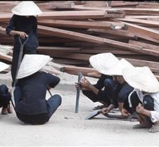 The Female Workforce